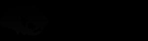 TIGA grey logo